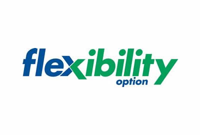 Flexibility option
